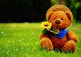 speelgoed grasmaaier voor kinderen